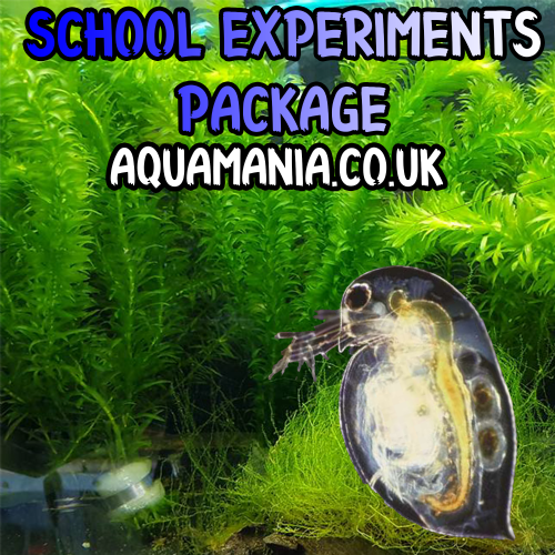 School Experiments Package